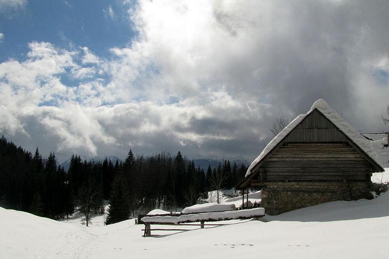 Pokljukan maisemissa kelpaa hiihtää pikamatkaa